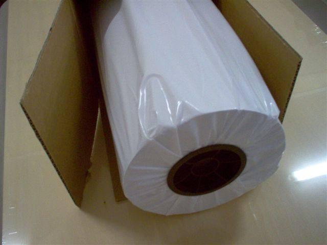 Cuộn giấy sơ đồ trắng được bảo quản cẩn thận