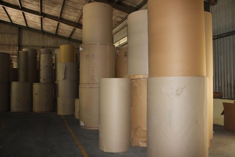 Nhiều cuộn giấy trải bàn cắt lớn sắp xếp tại kho
